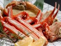 大きな紅ずわい蟹