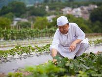 【和食担当の井口総料理長】自家菜園に並ぶお野菜の種類や素材を吟味し、季節の献立を考えていきます