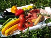 【夏季限定】新鮮なお野菜も楽しめるイタリアンBBQ♪女性に人気のお食事です。