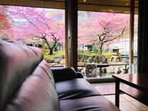 伊東園ホテル松川館 (静岡県)