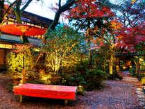 ■夜になると、紅色の葉たちが光に照らされ、より幻想的な空間が広がります