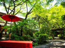 """【庭園】緑の木々に囲まれ耳を澄ますと、聞こえてくる様々な""""音""""を、静寂の中で感じる"""