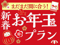 【1月限定★】お年玉プラン!2019年もよろしくお願いします!