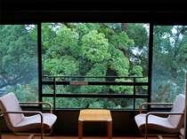 菊池・熊本空港の格安ホテル 菊池観光ホテル