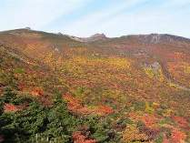 鮮やかに色づく安達太良山