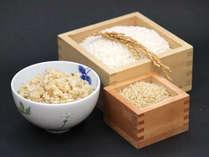 *【お米】無農薬・無化学肥料のササニシキ。 コシヒカリと比べると粘りが少なく上品な味わい。
