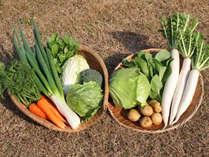 【野菜】佐渡産・有機栽培ササニシキや農薬・化学肥料を使わない農作物を生産者から直接仕入れています。