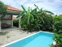 芭蕉・庭にはプールと東屋を設置
