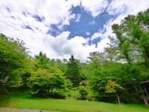 *春夏の中庭/ロビーから眺める中庭は 四季折々の風景を見せてくれます