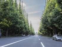 神宮外苑イチョウ並木まで徒歩3分。11月下旬より紅葉が見ごろを迎え、イチョウ祭りが開催される。