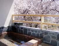 【207号室客室専用露天風呂】一組様だけが入れるまさしく桜開花時は花見風呂です