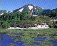 湿原、高山植物、紅葉が美しい山