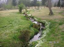 川が流れる芝生に囲まれた庭