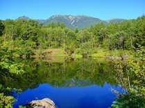 *【夏の風景】美鈴池の水面に、雲ひとつない青空が鏡のように映り込んでいます。