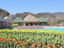 【ラグーナテンボス】花と水とアートの融合★季節の花を楽しめるフラワーラグーン♪
