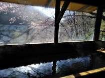 「目の湯」は女性専用の内風呂となっております。高台の窓から山の景色をお楽しみいただけます。