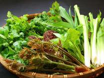 【山の恵みををいただきます☆】山菜・たけのこ・春の味覚満載!1万円ごちそうプラン♪【2食付】