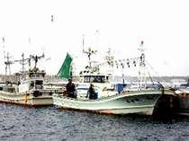 有料で釣り船を手配いたします。ベテラン船長が絶好のポイントにお連れします。