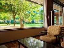 窓いっぱいに広がる緑を見ながらコーヒーも楽しめます(飲み物は有料)