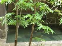 緑が映える 露天風呂 源泉100%かけ流し