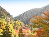 *【本館・お部屋のテラスからの眺望】紅葉シーズンは美しく色づいた有馬三山の湯槽谷山を望めます