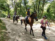 【ホーストレッキング(一例)】お子様もOK♪お馬に揺られて景色を楽しみながら進もう♪(別途料金)