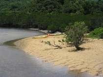 マングローブ群の吹通川、カヌーで大自然と触れてみては。車で5分