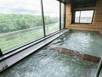 清流矢部川と百年楠群の公園を眼下に 一望できる展望浴場