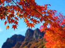 紅葉が岩肌に映える。秋がやってきました。