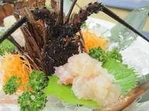 ぷりっぷりの食感がたまらない豪快に楽しむ伊勢えび料理。