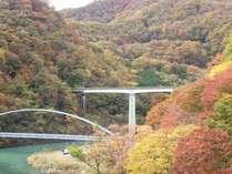 【紅葉を見にい・こ・う・よ・う♪】紅葉を見ながら温泉旅☆1泊2食付きバイキングプラン
