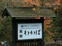 黒川温泉での~んびりされたい方に超おすすめ!