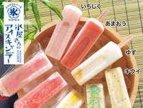 【東九州夏のファミリーキャンペーン!】「氷屋さんのアイスキャンディー」付き☆一泊朝食付きプラン♪