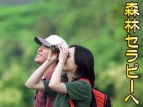 【トレッキングプラン】お弁当を持って霊峰・市房山へ!森林セラピーで癒される(2食付)