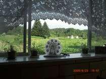 窓の外は広々した田園風景が望めます