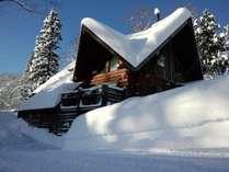 冬のトロンコ