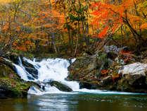鶯宿温泉逢滝の紅葉。当宿より車で5分。