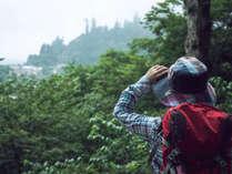 **【八甲田ミニツアー】その日の旬の場所へご案内致します。