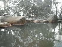 原生林に囲まれた秘湯ならではの景色をお楽しみ下さい。