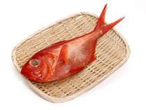 ★10月解禁★グループに1匹付けます!金目鯛の姿煮プラン【1泊2食付き】