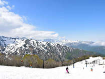 【3/12~4/2のリフト券付プラン】3月の白馬は一味違う最高の雪質で早春を楽しもう◎