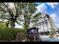 【ホテル外観】半世紀以上の歴史を刻む建物と楠が目印です。