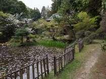睡蓮の池と香梅荘