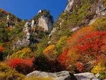 【土曜・特定日】紅葉シーズン絶景の昇仙峡ロープウェイ割引券付と約70種類四季折々の豪華創作バイキング☆