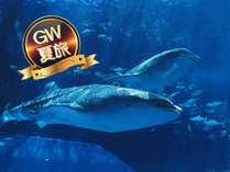 【GW&夏旅応援】期間限定★2連泊以上だからお得★美ら海水族館チケット付プラン(朝食付)