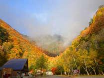 燃える紅葉に包まれる七倉谷・七倉山荘周囲