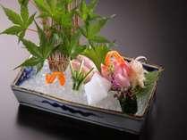 駿河湾鮮魚の造り