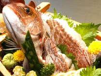【春限定】鯛しゃぶ×鯛めし×鯛活き造り♪春・椿リーズナブルコース★【女子会♪】【ゴルフコンペ】