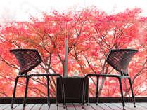 客室のウッドデッキテラスは全面ガラス張りで四季折々の眺望をお楽しみ頂けます。
