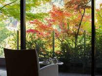 秋が深まる鬼怒川。渓谷の別荘で過ごす秋のひととき。